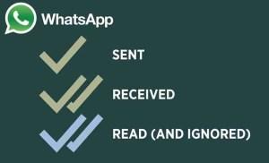 spunte blu di whatsapp