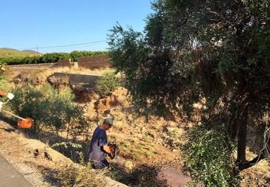 L'Ajuntament neteja els barrancs per minimitzar els perills de les pluges torrencials