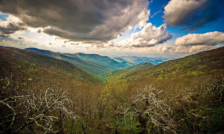 4 Blue Ridge Parkway Hikes with Unforgettable Views