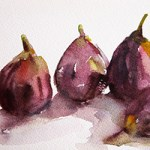 Fig Season in My Studio