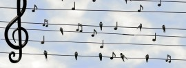 Sing out loud. It's good for your health
