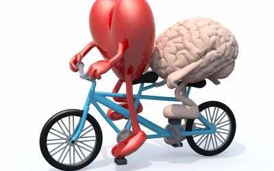 Dit intelligente hjerte – Lyt til hjertets visdom