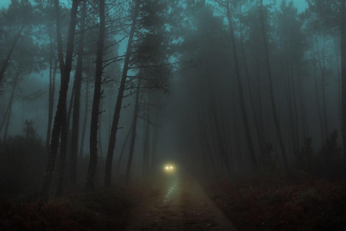 Passage d'une voiture sous un tunnel d'arbres