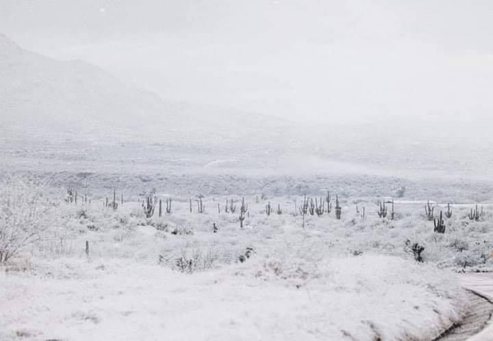 route et arizona sous la neige