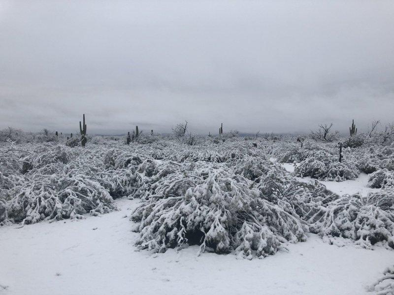 autre photo du desert arizona KRimcoski