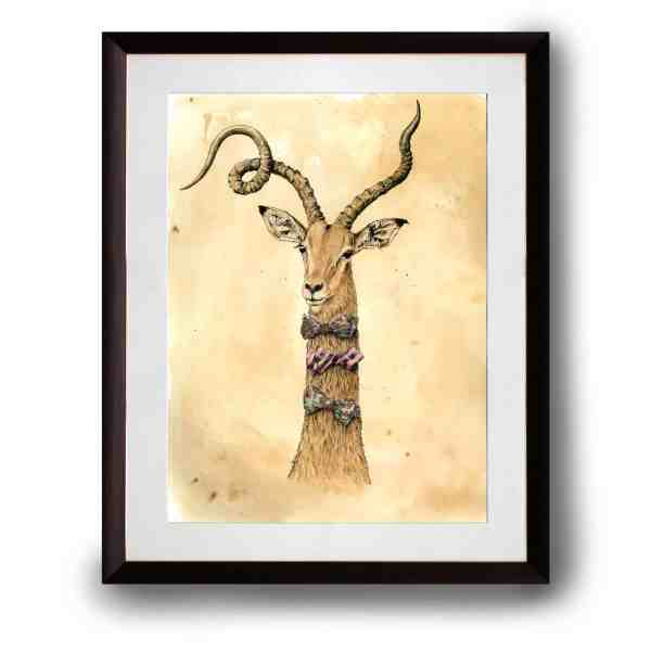 Original pen and ink illustration of an impala in a dark wood frame on a white background