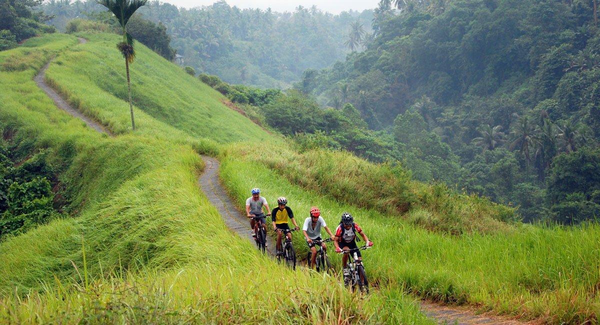 バリサイクリングアドベンチャー