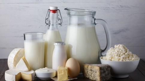 Milch, Käse und andere Milchprodukte