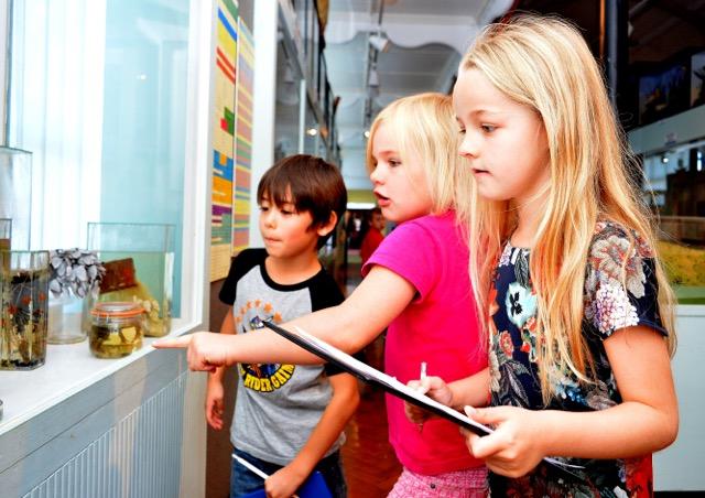 Teachers' Drop In Event: School opportunities