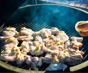 Grilling Garlic lemon Basil Chicken