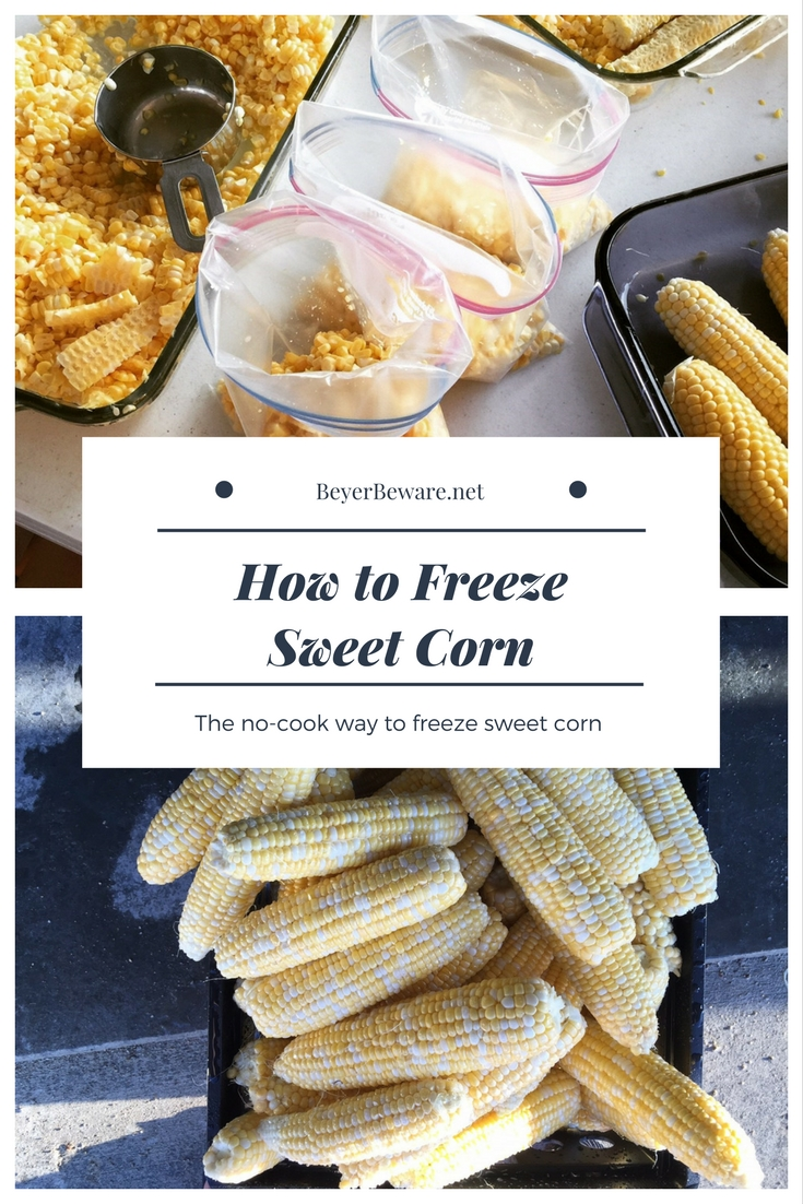Have you wanted to learn how to freeze sweet corn? Here is a quick no-cook, no-boil method that is a cool way to freeze sweet corn on a hot summer day. #Sweetcorn #Freezer #FoodPreservation #Vegetables #Garden