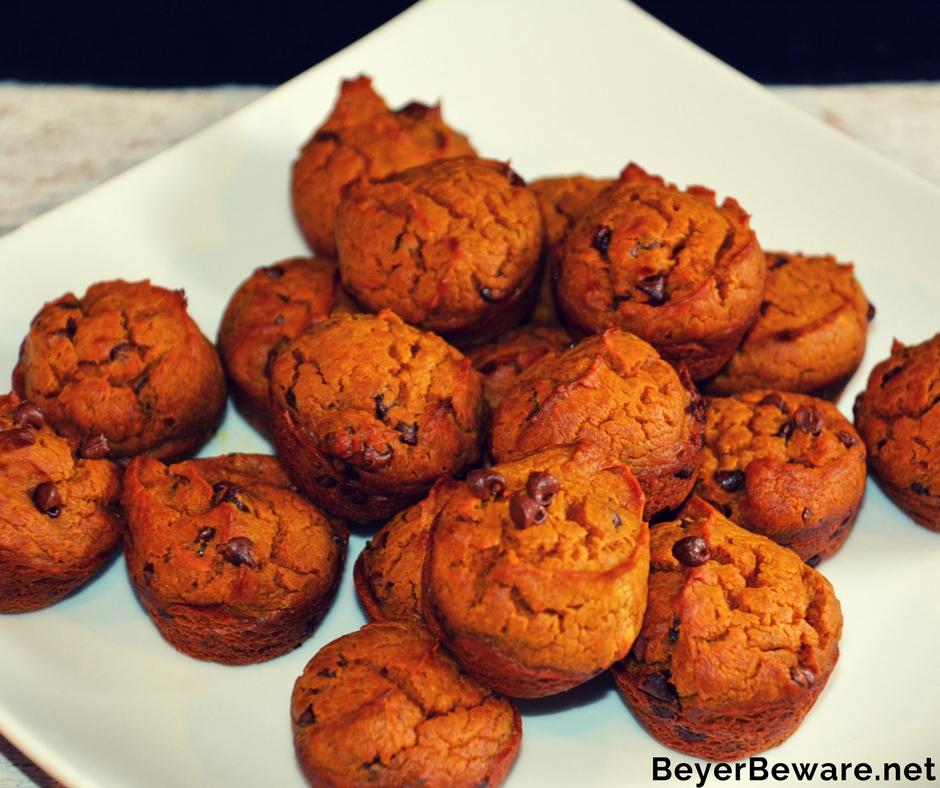 Flourless Pumpkin Peanut Butter Chocolate Chip Blender Muffins