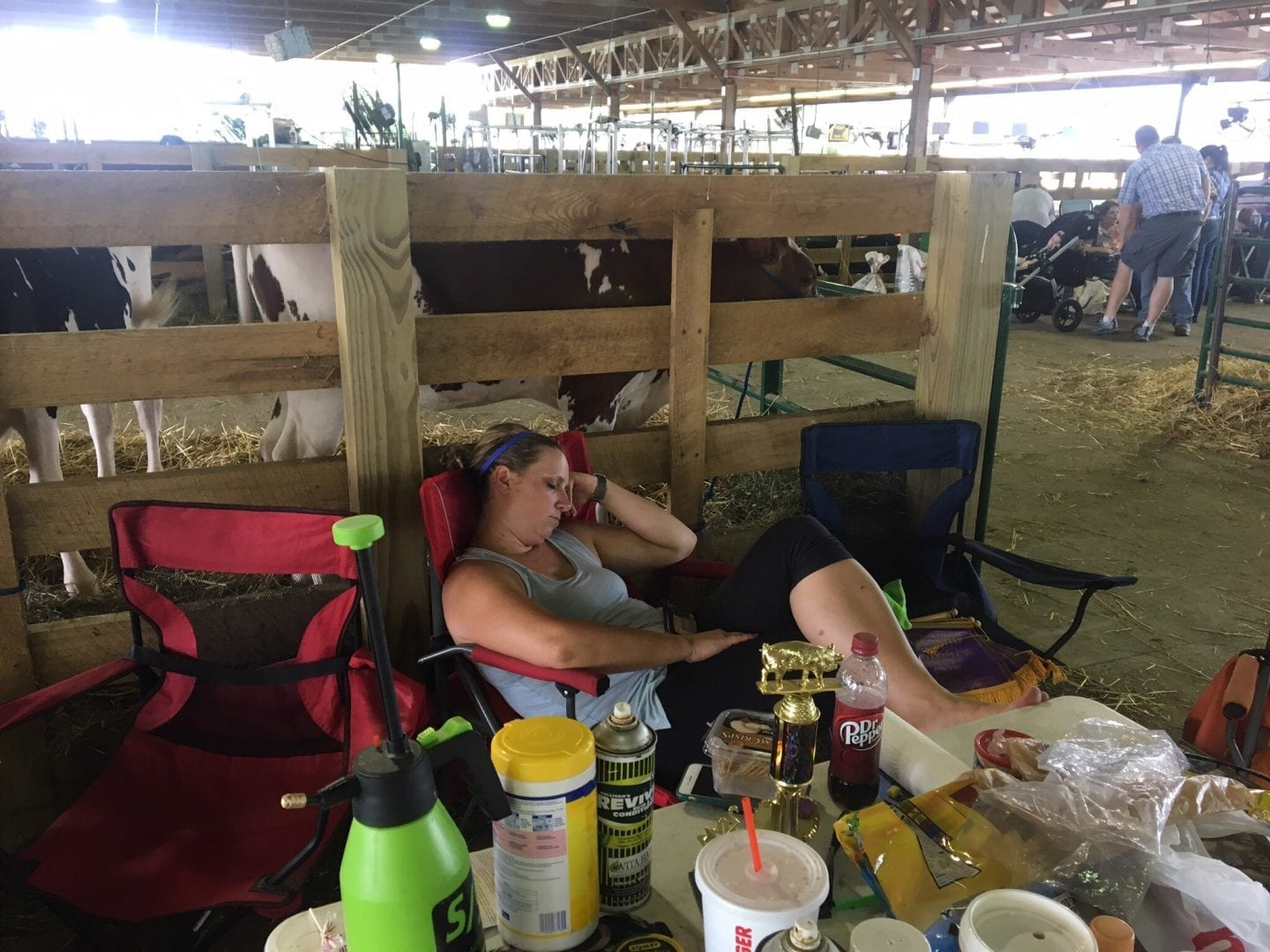 What you need to have at a livestock show or county fair?