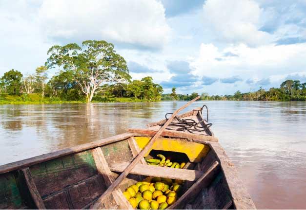 Amazon-Peru