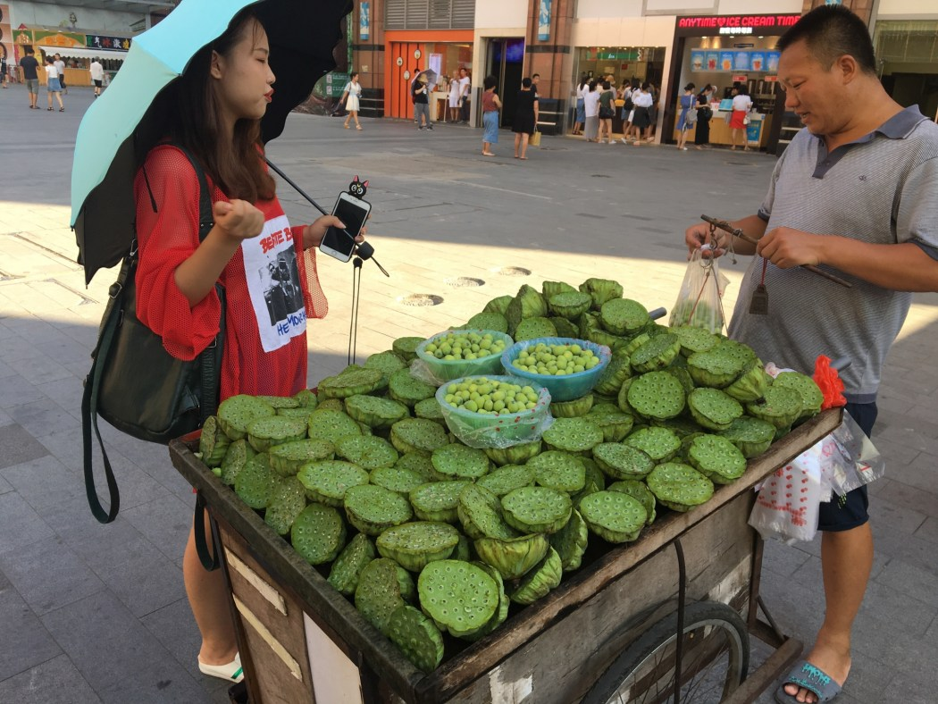 Lotus Seed Head Seller