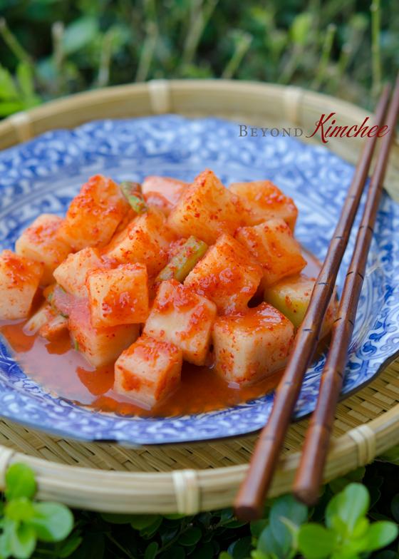 Korean cubed radish kimchi (kkakdugi) is fermented perfectly.