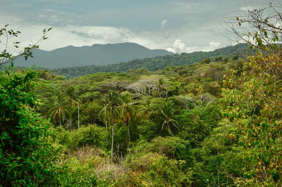 Tayrona-National-Park-Colombia-(6)