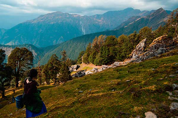 Trek up Chopta, Inida, with the Himalayas in the background