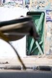 chennai-photowalk-7b_0100