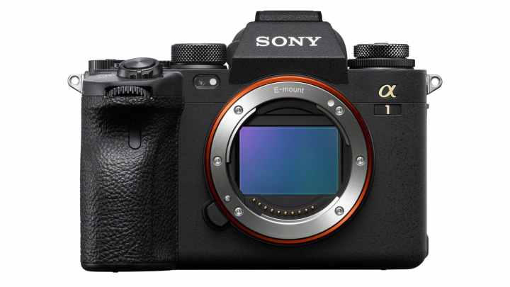 Sony's Flagship Mirrorless Camera, the Sony Alpha 1