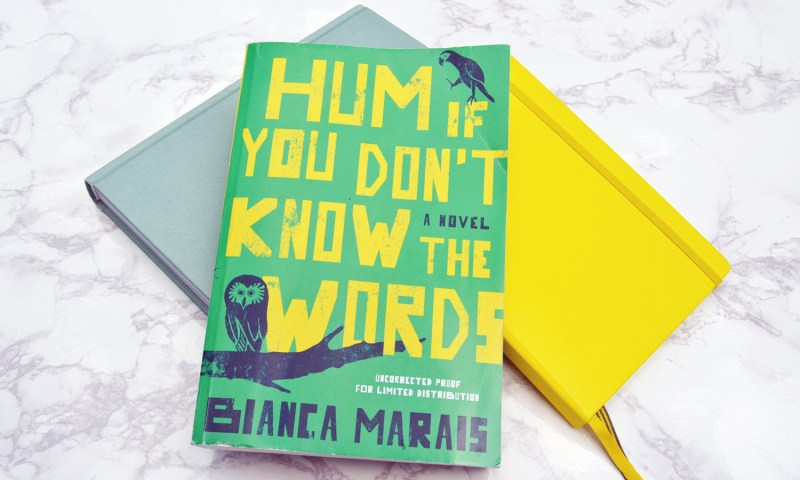 Hum if You Don't Know the Words is the best book of the summer and we got to read it first! Click for our review of this must read!
