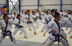 Read more about the article How to prepare for your next martial arts grading