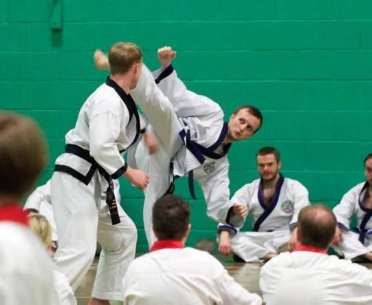 Mental health and martial arts