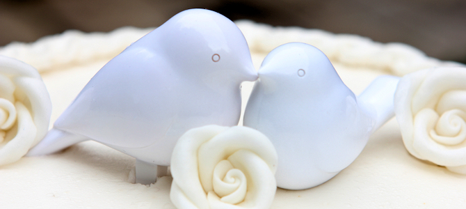 Wedding Cake Doves - Photo by Will Fisher