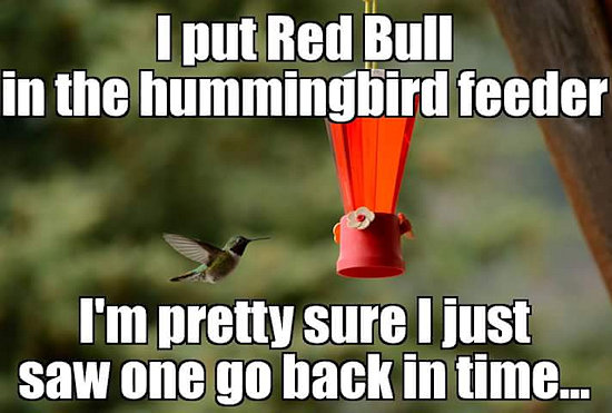 Red Bull Hummingbird