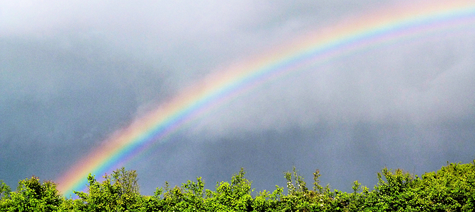 Rainbow After the Storm - Photo by steve p2008