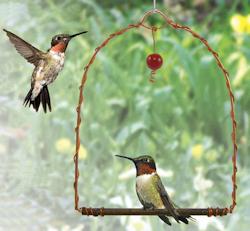 Songbird Essentials Swing