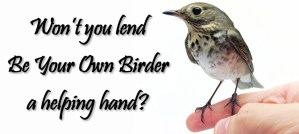 Won't you lend Be Your Own Birder a helping hand?