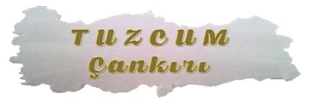 www.tuzcumcankiri.com
