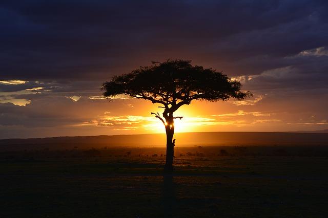 HanseMerkur Reiseversicherung in Kenia genießen
