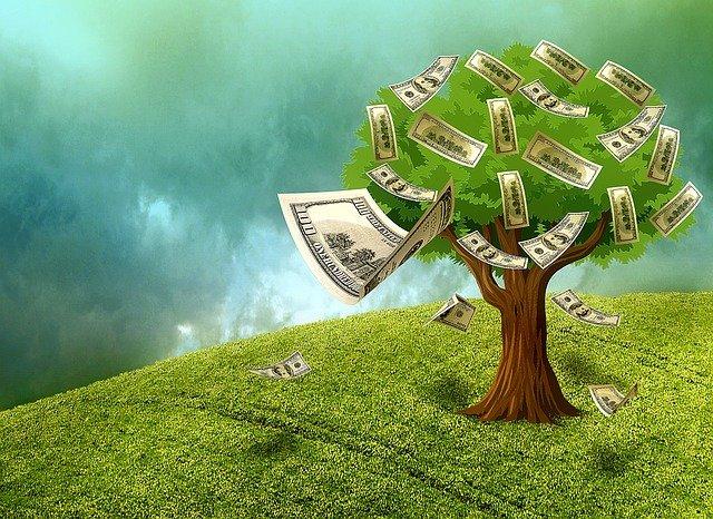 Vivid Money – bis zu 100 Euro geschenkt und hohe Geldzurückgarantie