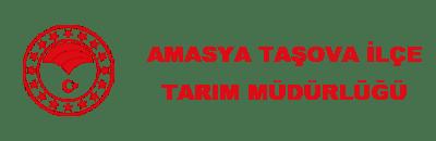 amasya-tasova
