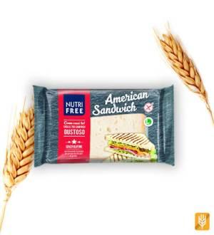 Americký bezlepkový sendvič