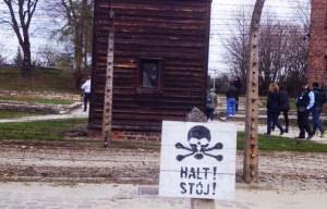 bus reis concentratiekamp Oswiecim