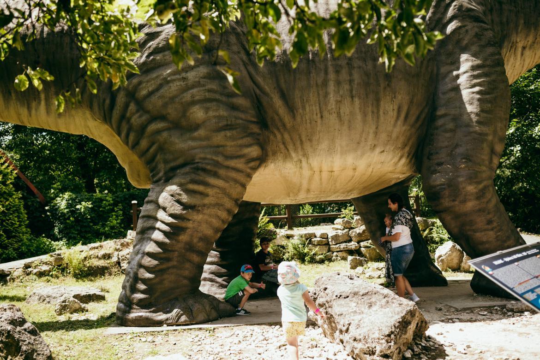 bałtów dinozaury rozmiar