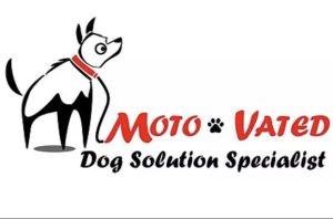 Shawna Gower Dog Solution Specialist