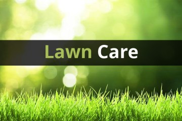 7 Step Lawn Care Program