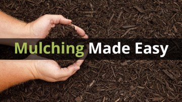 How Much Mulch Should You Order