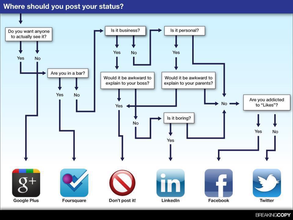Social Media Rules?