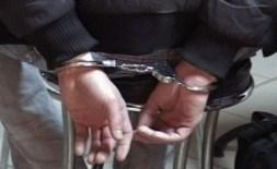 655-402-domashnite-nasilnici-chesto-sa-direktori-policai-prepodavateli