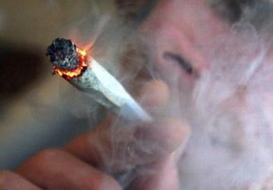 Петима задържани за шофиране след употреба на наркотици в Плевен и Искър