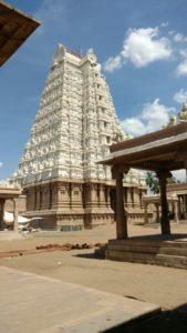 DD 3 Rajagopuram 3