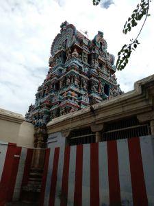 DD 79- Vimana Gopuram