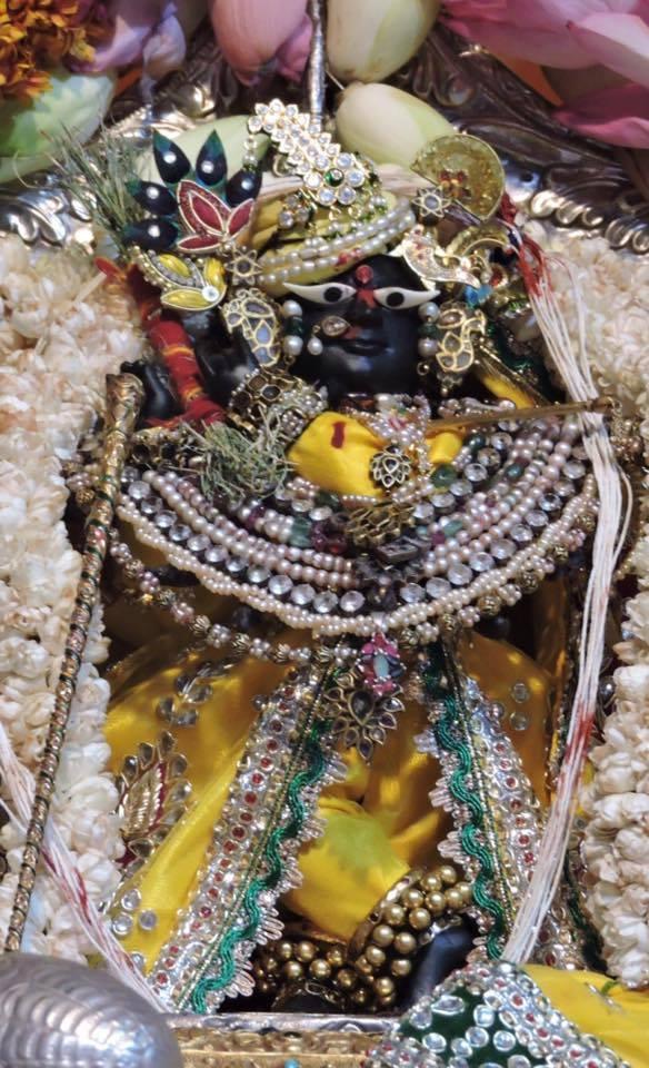 Darsan da deidade Sri Sri Radha Raman no dia do seu aparecimento, 21 de maio, 2016.