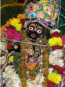 Sua Deidade adorável Sri Gopal Jiu