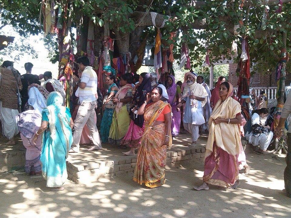 Peregrinos em Bhadravana no Vraja-Mandala Parikrama 2015